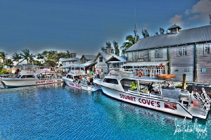 A great morning in Nassau at Stuart Coves ....Captains st... by Steven Anderson 